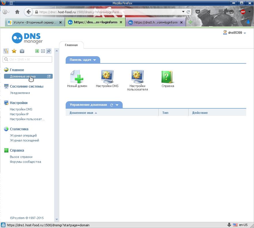 раздел управления доменными именами, панели управления записями ДНС / DNS